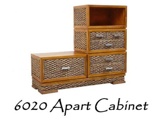 6020-Apart Wicker Cabinet