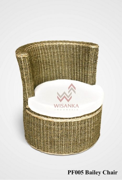 Bailey Wicker Pet Chair