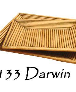 Darwin Rattan Tray