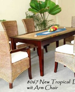 New Tropical Rattan Dining Set