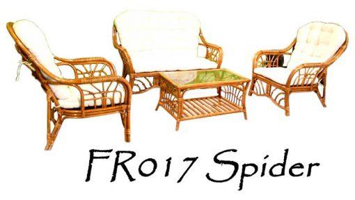 FR017-Spider